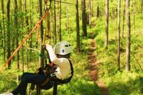 A Person Ziplining Through the Woods